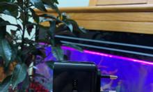 Camera quay lén cốc sạc cảm biến ban đêm xem trực tiếp trên