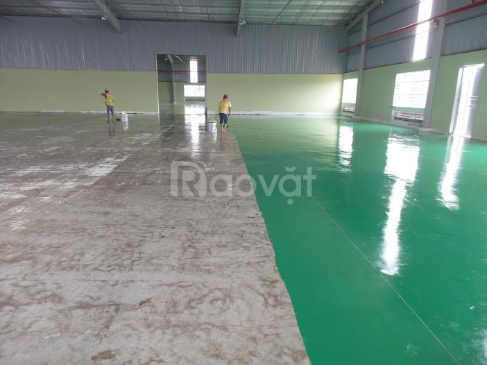 Cung cấp sơn lót Epoxy trong suốt thi công cho sàn nhà xưởng