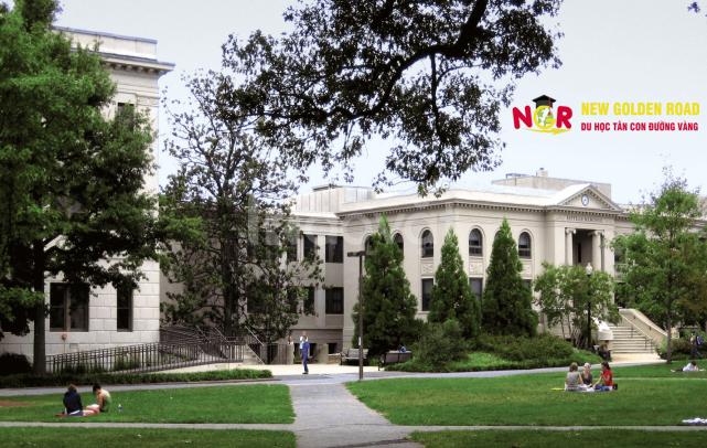 Du học Mỹ với học bổng $15.000 tại Công ty New Golden Road