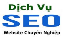 Dịch vụ seo website tại tphcm