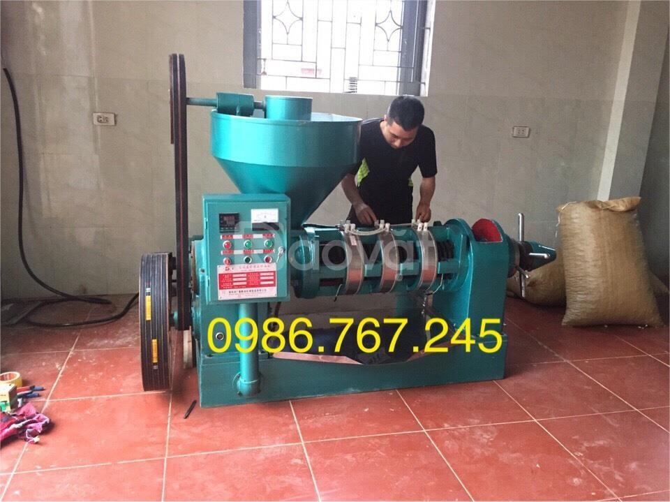 Máy ép dầu lạc công nghiệp Quảng nam , máy ép dầu giá rẻ guangxin