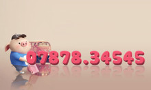 Sim mobi 07878.34545