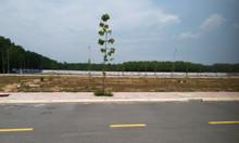 Cần bán sỉ số lượng lớn  đất nền tại khu công nghiệp Tân Uyên có sổ đỏ