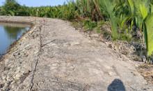 1000m2 đất thổ vườn (thương lượng) Hiệp Phước Nhà Bè