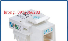 Nhân điện thoại RJ11 Cat3 AMP mã 1375192-1