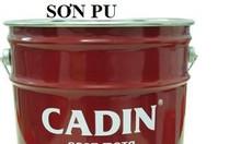 Chuyên bán sơn pu cho gỗ cadin màu vàng lon 5l chính hãng tại gia lai