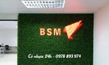 Cỏ trang trí nội thất giá rẻ, cỏ nhân tạo trang trí giá rẻ tại Hà Nội