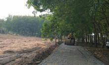 Bán đất KCN Minh Hưng 3 giá rẻ, SHR, bao sang tên trong ngày.