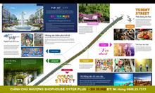 Cần bán Shophouse Oyter Plus, căn góc cách biển 100m FLC Quảng Bình