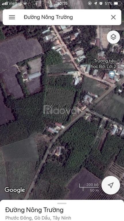 Đất mặt tiền đường Nông Trường - Gò Dầu, ngay KCN Phước Đông