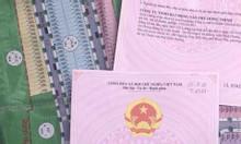 Chính chủ cần bán gấp đất nền tại Thuận An, Bình Dương.
