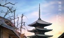 Kinh nghiệm du lịch Nhật Bản 2019