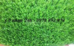 Cỏ nhân tạo trang trí tường, thảm cỏ trang trí giá rẻ tại Hải Phòng