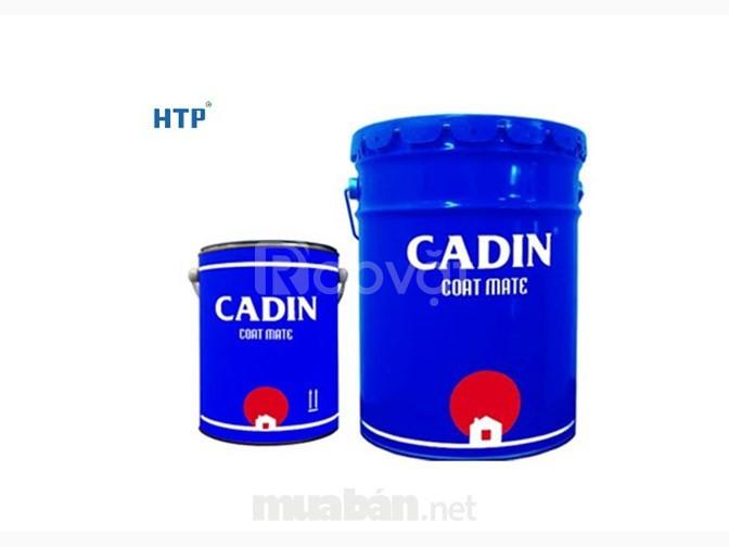 Địa chỉ bán sơn dầu Cadin giá rẻ, pha màu theo yêu cầu
