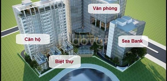 BRG Grand Plaza 16 Láng Hạ - những căn đầu tiên
