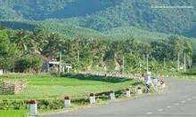 Đất dự án, đất huyện Hoài Nhơn 100m²