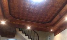 Phân lô Kim Mã, Vạn Bảo 50m2 3 tầng cũ, cách ô tô 10m chỉ 3.7 tỷ