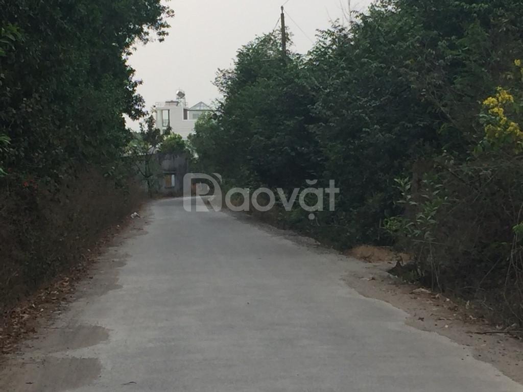Bán đất 1.2 tỷ/sào, sổ hồng, gần suối, xã Long Phước, Long Thành.