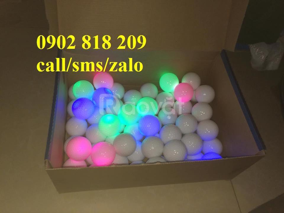 Combo 5 bóng chơi golf phát sáng