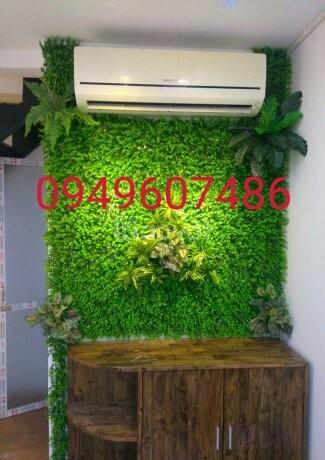 Cỏ trang trí tường, cỏ nhân tạo trang trí giá rẻ