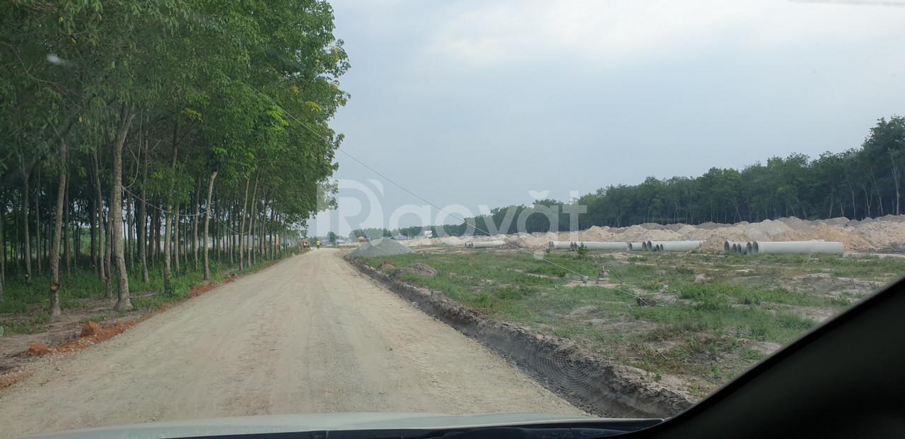 Bán đất tại khu công nghiệp Bàu Bàng - khu dân cư Bàu Bàng