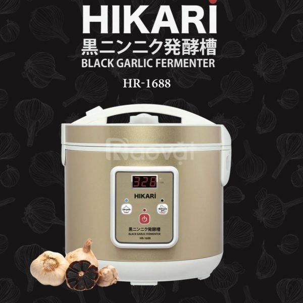 Máy làm tỏi đen HIKARI HR-1688 công nghệ lên men tự nhiên Nhật Bản