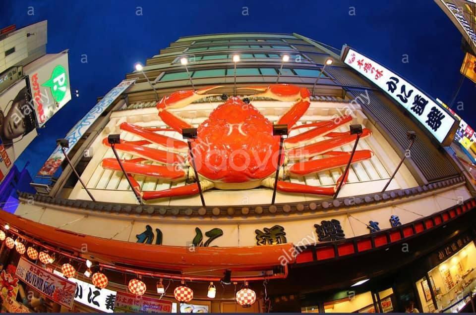 1.000m2 làm Nhà hàng Hải sản ở Trường Chinh, Bà Triệu & Lạc Long Quân
