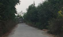Bán 1,6 sào đất Long Phước làm nhà vườn sát suối, vườn cây ăn trái.