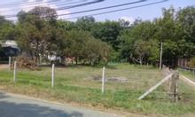 Đất  xã Lộc Hưng huyện Trảng Bàng Tây Ninh giá 1trm2, diện tích 6641m2