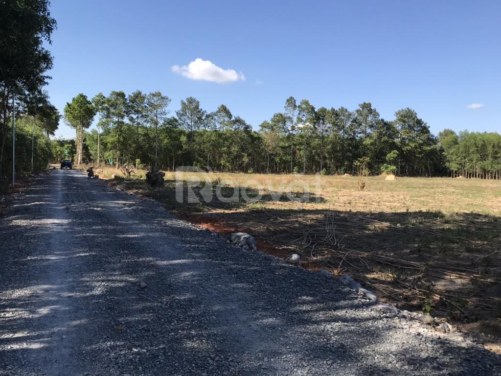 Đất Long Thành 9500m2 CLN có 200m2 thổ cư chỉ 1.9 triệu/m2.