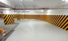 Sơn phản quang Seamaster màu vàng kẻ vạch cho hầm để xe