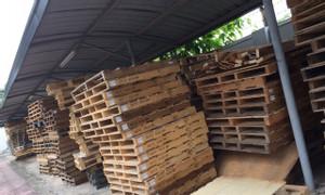 Công ty bán Pallet gỗ cũ Vĩnh Phúc, Pallet gỗ mới Vĩnh Phúc