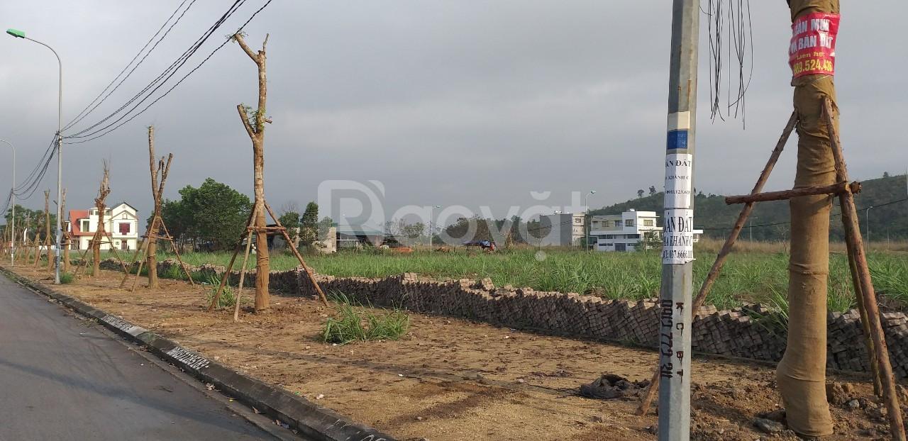Đầu tư liền kề, biệt thự Hà Khánh C - Cao Xanh Hà Khánh, Hạ Long