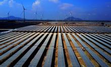 Vệ sinh tấm pin năng lượng mặt trời tại Ninh Thuận