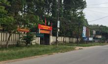 Bán 1,2ha đất sau UBND Tân Hiệp, Long Thành, đầu tư đón đầu sân bay LT