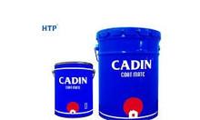 Bán sơn PU Cadin cho bể bơi giá rẻ, chính hãng từ nhà máy