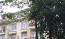 Bán biệt thự nhà vườn khu đô thị Dương Nội Nam Cường DT 200m