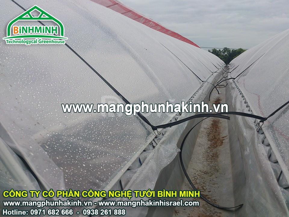 Lưới chắn côn trùng, lưới chắn côn trùng 32 mesh, lưới chắn côn trùng