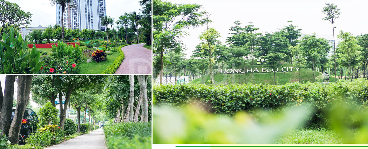 Hồng hà Eco City – Gardenia – 1,3ty/2pn - Cách Nước Ngầm 2km