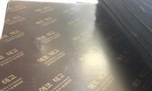 Ván ép xây dựng cốt pha phủ phim giá rẻ 230k