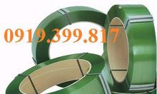Dây đai niềng thùng, pallet PP, PET giá rẻ tại Bình Định