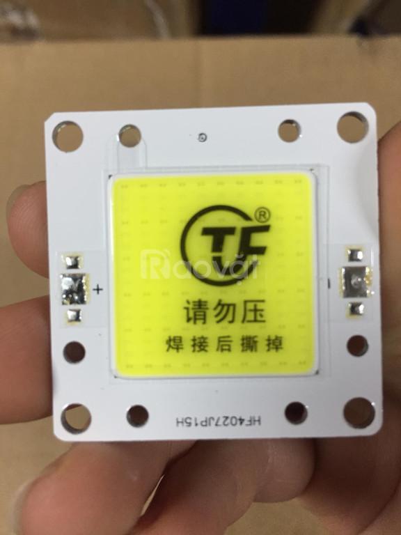 Chíp COB 50W, ánh sáng trắng, 25*25mm (Outdoor)HF4027