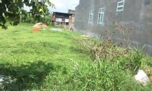 Bán gấp miếng đất ngay chợ Chiều đường Huỳnh Minh Mương Tân Thạnh Đông