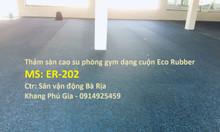 Thảm sàn cao su phòng gym Eco rubber