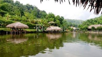 Biệt thự quần thể nghỉ dương hasu farstay Ngoại thành Hà Nội