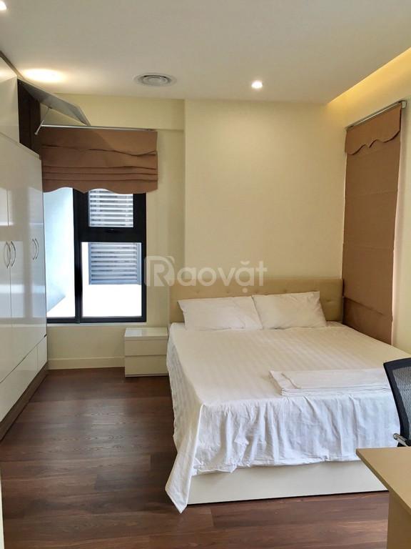 Cho thuê căn hộ chung cư D'Capitale Trần Duy Hưng tòa C5x08