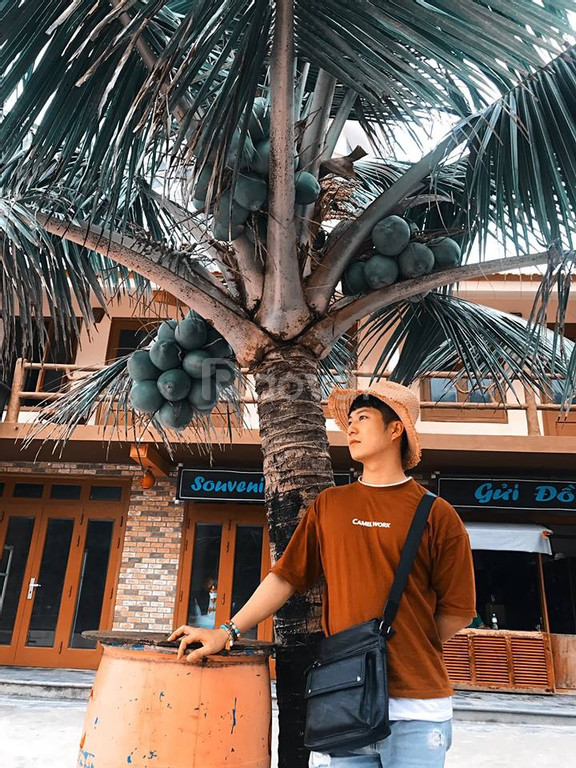 Tour Hà Nội - Cát Bà - Hà Nội 3N2Đ