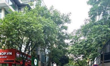 Bán nhà mặt ngõ 23 phố Đỗ Quang, ngõ oto, mặt tiền 4m kinh doanh tốt .