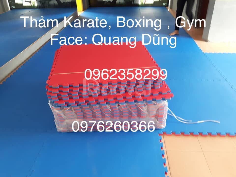 Thảm karate, boxing, gym  (ảnh 1)