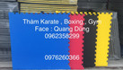 Thảm karate, boxing, gym  (ảnh 7)